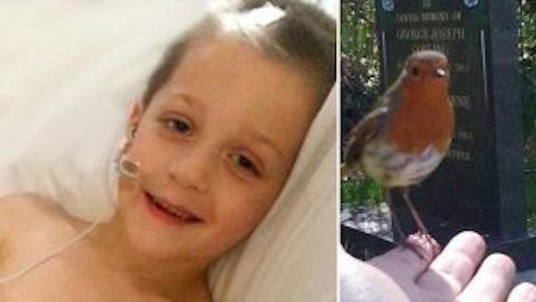 マジ鳥肌もんなんだけど…4歳で死んでしまった息子の墓参りでの奇跡