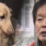紀州ドン・ファンの愛犬→土葬の動画にあの疑惑の人物が・・マジか!