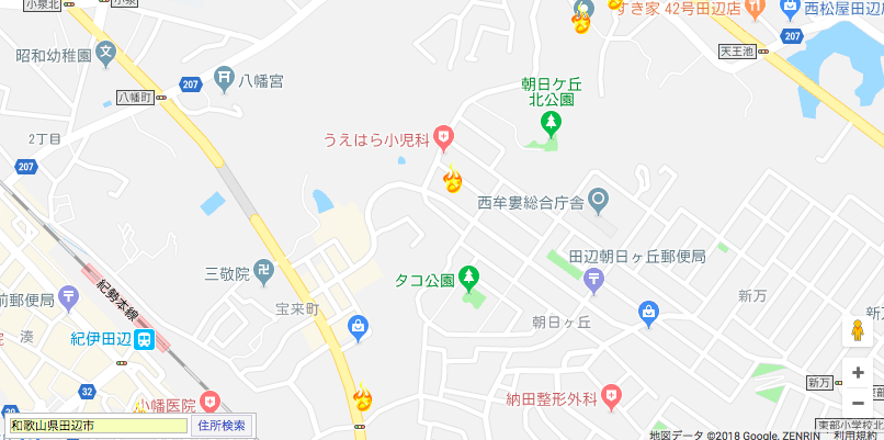🤪大島 てる 徳島 市
