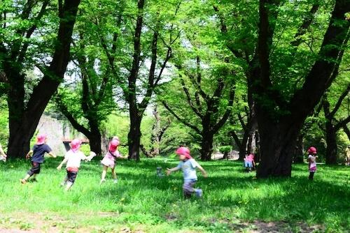 幼稚園,運動
