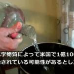 アメリカの水道水が危険!鉛・フッソ化合物が混入の事実…対策は?